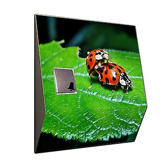 Doorbell stainless steel Ladybug - funny phone ring with a separate receiver