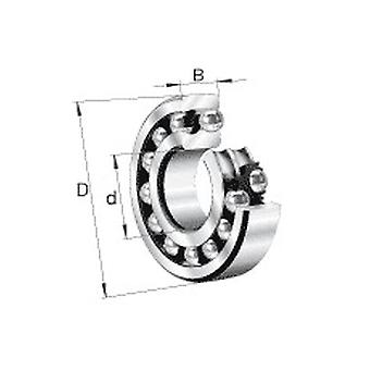 Nsk 2206K-2Rstn Double Row Self Aligning Ball Bearing