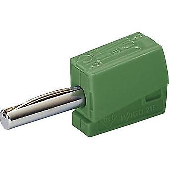 Spina, spina WAGO Jack dritto perno di diametro: 4 mm verde 1/PC