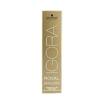 Schwarzkopf Igora Royal absolutos 60ml 6-50 Natural oro rubio oscuro