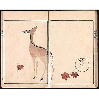 "Oson (Hoitsu) Picture Album (Oson gafu) Poster Print by Sakai Hoitsu (Japanese 1761  ""1828) (18 x 24)"