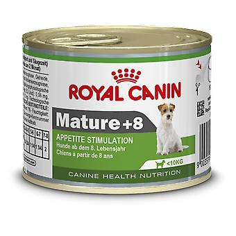 Royal Canin Mini Mature +8 Wet (Dogs , Dog Food , Wet Food)