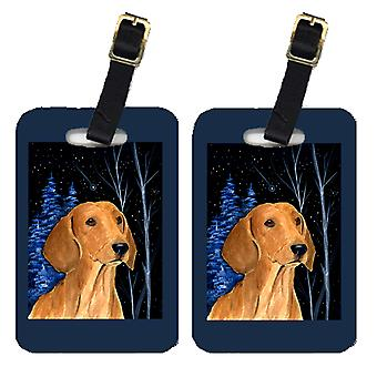 Carolines Treasures  SS8379BT Starry Night Dachshund Luggage Tags Pair of 2