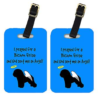 Carolines Treasures  AN1108BT Pair of 2 Bichon Frise Luggage Tags