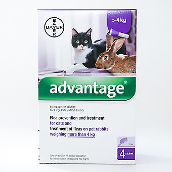 Vorteil (violett) für große Katzen über 8,8 lbs (4kg)