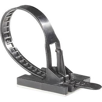 Richco TOBS-18-01A-RT TOBS-18-01-A-RT Kabelbinder 117 mm schwarz selbstklebende Basis 1 PC