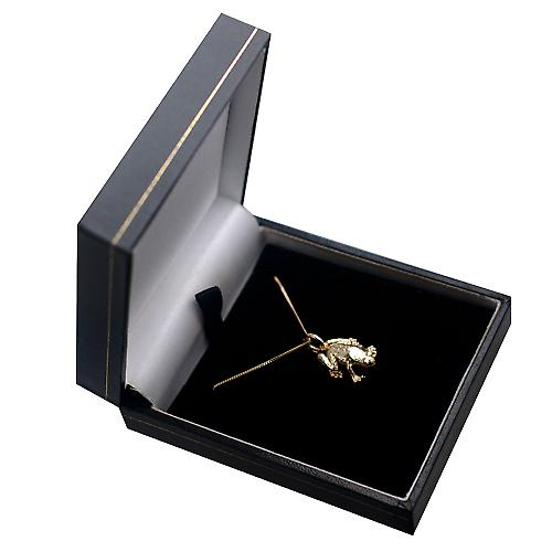9ct Gold 18x13mm solid Frog Pendant with a curb Chain 16 inches Only Suitable for Children