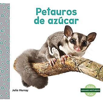 Petauros De Azucar / socker segelflygplan (Animales Nocturnos / nattliga djur)