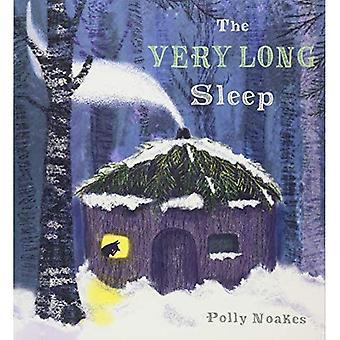 Den mycket långa sömnen (barnlek bibliotek)