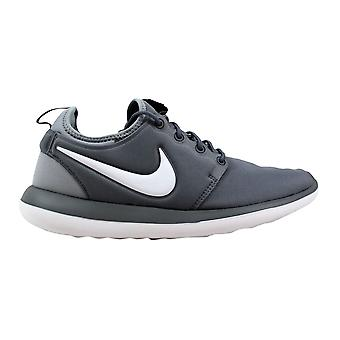 Nike Roshe Two Cool Grey/White-Wolf Grey 844653-004 Grade-School