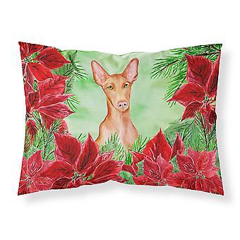 Pharaoh Hound Poinsettas Fabric Standard Pillowcase