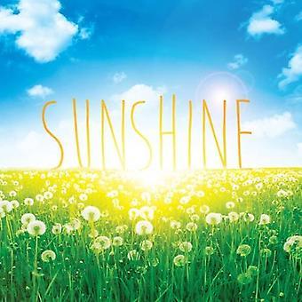 Sunshine (Weather Explorers)