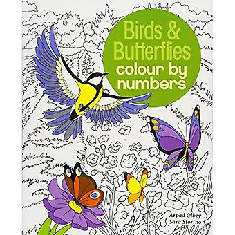 Birds & Butterflies Colour by Number