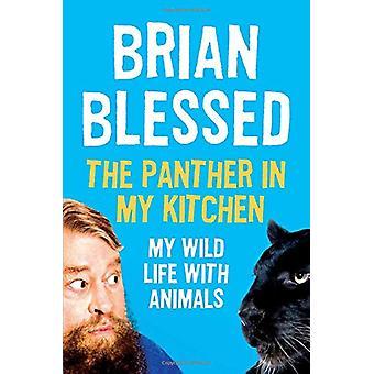 私のキッチン - ブライアンによって動物と野生人生でパンサーを祝福
