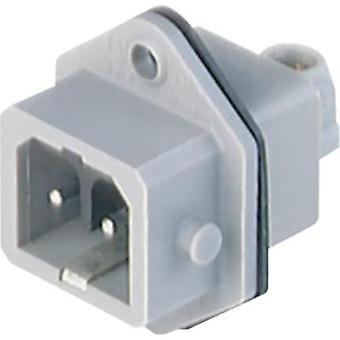Mains connector Plug, vertical mount Total number of pins: 2 + PE 16 A Grey Hirschmann STASEI 200 1 pc(s)