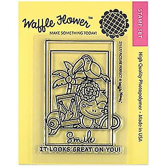 Waffle Flower Crafts Clear Stamps 3