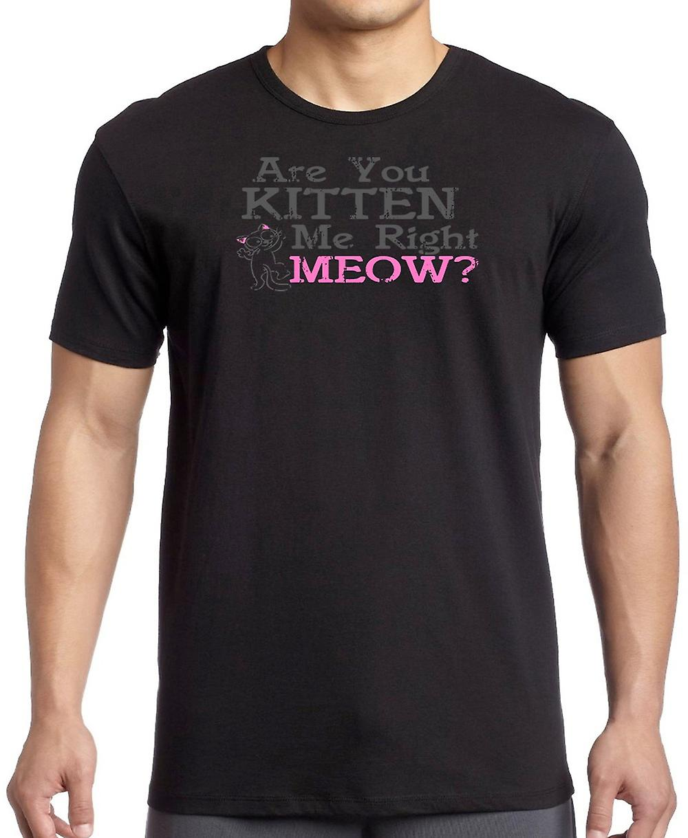 Are You Kitten Me Right - Meow - Funny Cat Lover Kids T Shirt