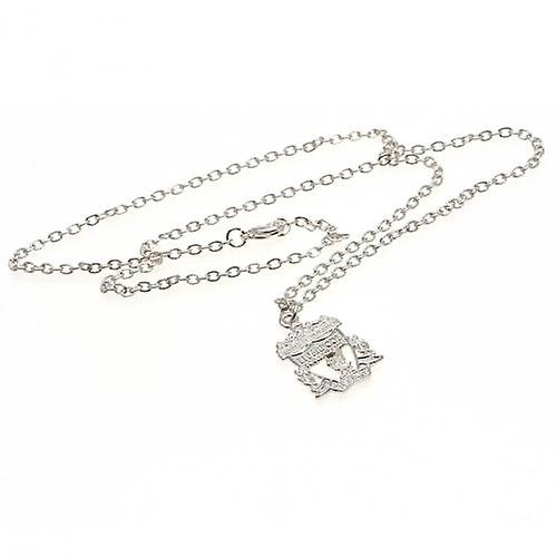Liverpool Silver Plated Pendant & Chain CR