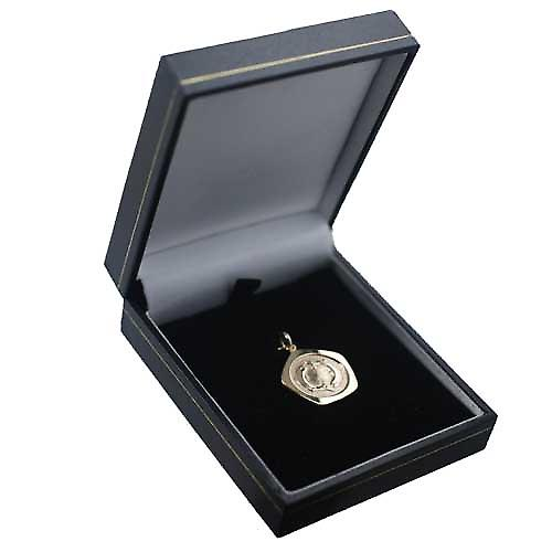 9ct Gold 21mm five sided Pisces Zodiac