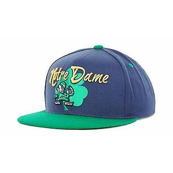 Notre Dame Fighting Irish NCAA TOW