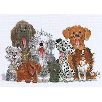 Zoo chiens Suzy de Duckport compté Cross Stitch Kit 15 po X 10 po. 14 barres 38 0178