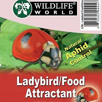 Ladybird Food / Attractant (Pack of 12)