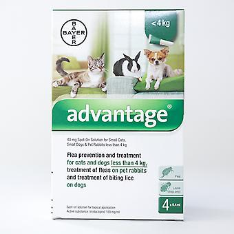 Advantage 40mg Spot-on (Green) for Small Cats, Dogs & Rabbits less than 4kg (8.8lbs)