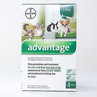 Fordel 40mg Spot-on (grønn) for små katter, hunder og kaniner mindre enn 4kg (8. 8 lbs)