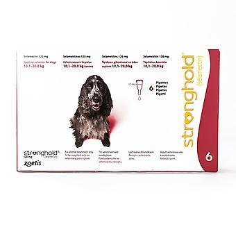 Høyborg for hundene 10.1-20kg (22-44lbs) rød, 6 Pack