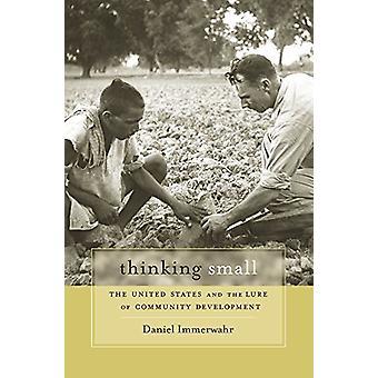 Pensando pequeno - os Estados Unidos e a atração de desenvolvimendo de comunidade
