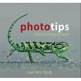 Phototips: Composing Nature