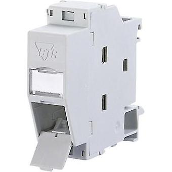 Network outlet DIN rail CAT 6 Metz Connect 1309427103-E Light grey