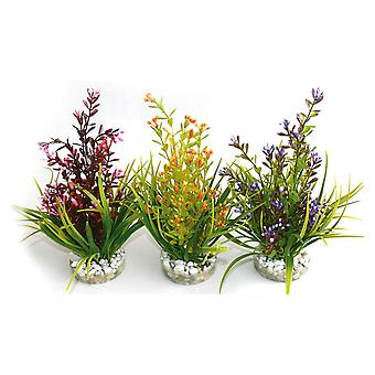 Sydeco Natural Plants Flowering Plant 18cm (Pack of 6)