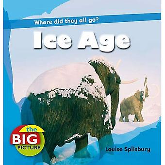 Ice Age (Big Picture) (The Big Picture)