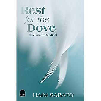 Rest for the Dove
