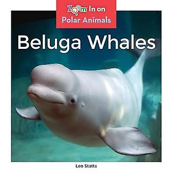 Beluga Whales by Leo Statts - 9781680791860 Book