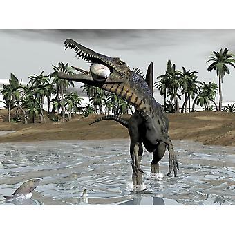 Spinosaurus dinosaur vandre i vann og fôring på fisk plakatutskrift