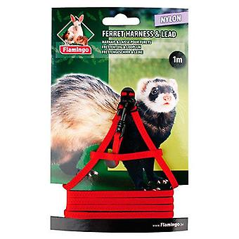 Flamingo Petral and leash for Ferrets (Small pets , Leads & Harnesses)