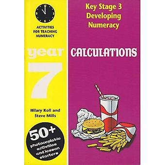 Developing Key Stage 3 Numeracy: Calculations Year 7: Activities for the Daily Maths Lesson (Developing Numeracy)