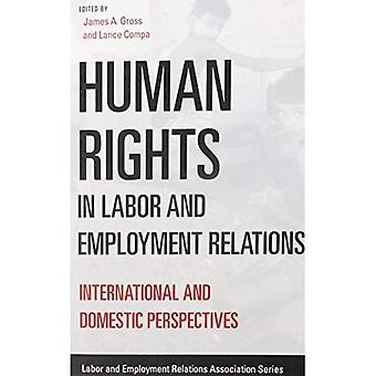 Human Rights in Labor and Employment Relations: International and Domestic Perspectives
