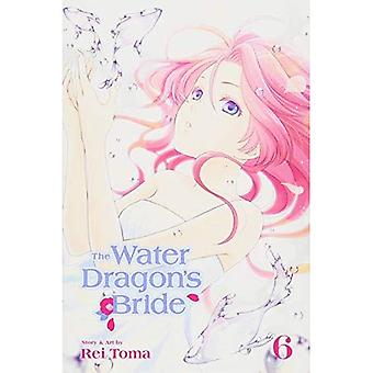 The Water Dragon's Bride, Vol. 6