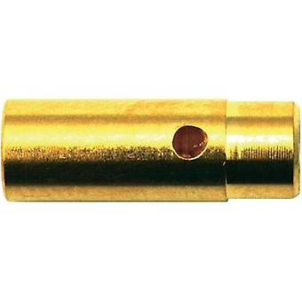 Battery plug, Battery receptacle 4mm Gold-plated 1 pair Modelcraft 71240
