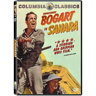 Sahara (1943) [DVD] USA import