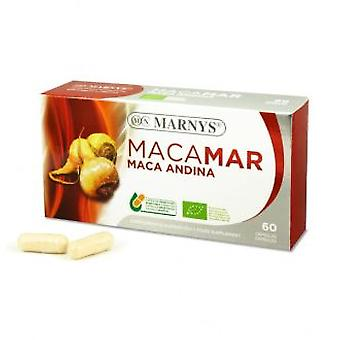 Marny's Bio Maca Andina 60cap. (Vitamins & supplements , Multinutrients)