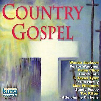 Land evangelie - land evangelie [CD] USA importeren