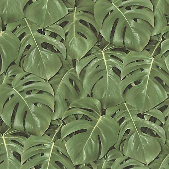 Tropical Jungle Leaves Palm Tree Wallpaper Paste The Wall Vinyl Green & Black