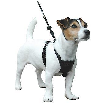 動物非プル ハーネス小型犬 S サイズ子犬犬の訓練のための会社