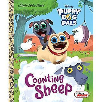 Tellen schapen (Disney Junior Puppy hond Pals) (gouden boekje)