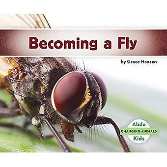 Blir en fluga (ändra djur)