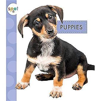 Puppies (Spot Baby Farm Animals)